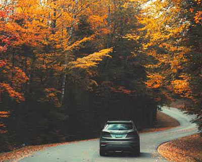 car driving on a road in the fall
