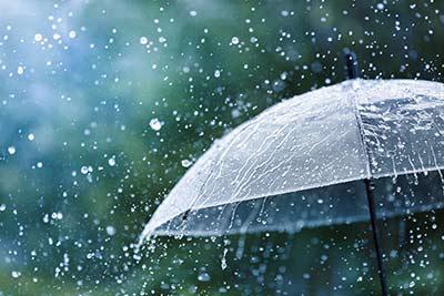 umbrella in a rain shower